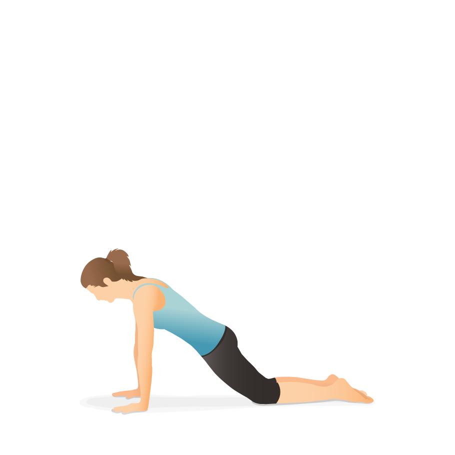 Yoga Pose Plank On The Knees Pocket Yoga