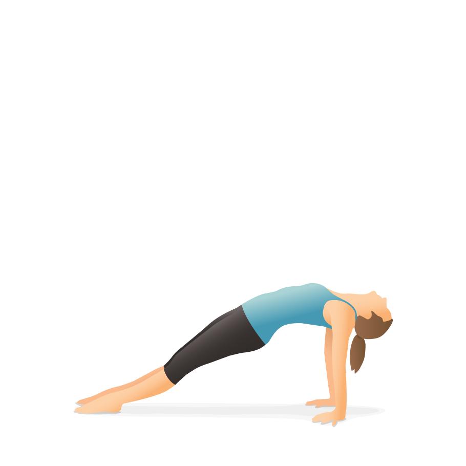 Yoga Pose Upward Plank Pocket Yoga